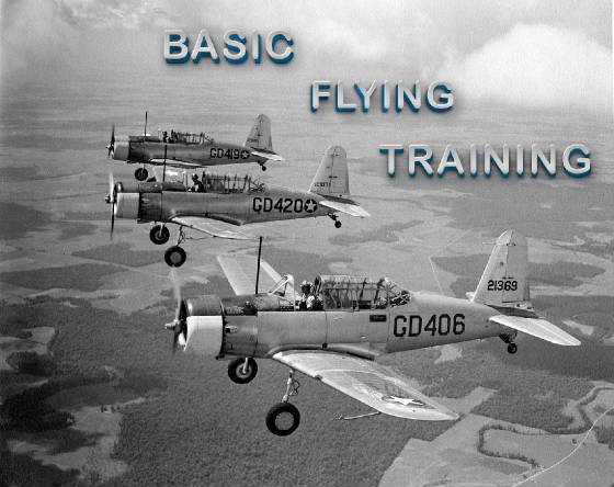 Basic-Flying-Training-WEB.jpg